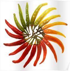 Red, green, yellow, orange chillies