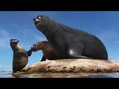 "Gerald in ""Finding Dory"" is a bullying victim! - YouTube"