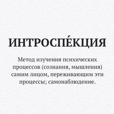 Стiна