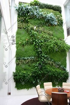 Living Green Walls and Indoor Living Wall Systems