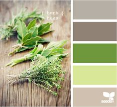 herb color palette