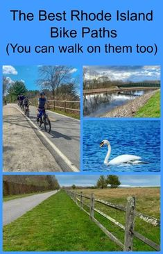 Get out onto Rhode Island's many paved bike trails! You can walk on them too. Read on to find the ones that are right for you! #RhodeIsland #biking #bikinginNewEngland All Family, Family Travel, Bike Trails, Biking, American Attractions, Independence Park, New England Travel, Bike Path, Travel Guides