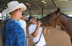 Jeff Goren, an Equine dentist, examines Mark Updike's horse Buddy's teeth, as his apprentice, Ryan Goren, looks on during the Vero Equine Ho...