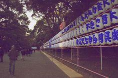 Japanese Lanterns ~ 22/52 Project