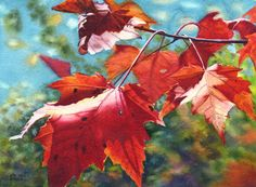 Autumn leaves art watercolor painting print by Cathy Hillegas, 11x14, maple leaves, red leaves, watercolor print, maple tree, red green blue by CathyHillegas on Etsy https://www.etsy.com/ca/listing/87281149/autumn-leaves-art-watercolor-painting