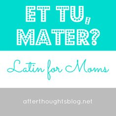 Afterthoughts: Latin for Moms: Understanding the Five Basic Cases