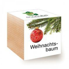 ecocube Pflanzen im Holzwürfel - Weihnachtsbaum