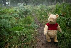 We can't wait to reunite with Winnie the Pooh once again when Christopher Robin arrives in theaters August Find out how much you relate to the silly old bear by taking this quiz. Tigger And Pooh, Winne The Pooh, Cute Winnie The Pooh, Winnie The Pooh Quotes, Winnie The Pooh Friends, Pooh Bear, Eeyore, Disney Pixar, Arte Disney