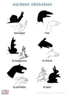 fiches et pdf à télécharger Plus ~ Nutty Goat Ideas Shadow Puppets With Hands, Diy For Kids, Crafts For Kids, Diy Crafts, Hand Shadows, Shadow Art, Kids And Parenting, Activities For Kids, Origami