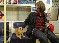 pictures of James bowen and Bob - Google Search