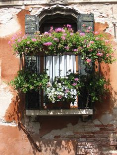 1000 Images About Balcony On Pinterest Balconies Paris Balcony And Balcony Garden