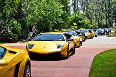 Lamborghini + Lamborghini + Lamborghini + Lamborghini... :-) @Lamborghini Festival 2012