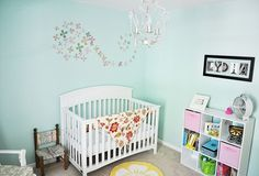 Sky Blue with feature wall