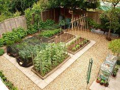 Prydlig och lättskött köksträdgård