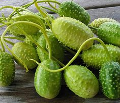Komkomber chiki (Antilliaanse komkommer, gestoofd)  antilliaans-eten.nl