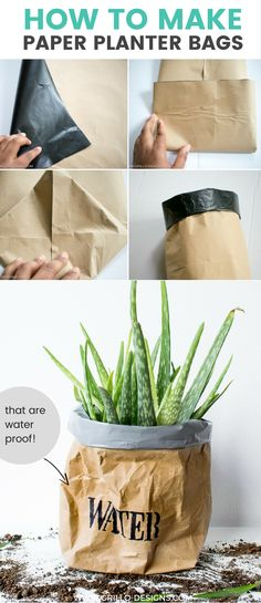 DIY paper planter bags - learn how to make a waterproof, durable planter bag using kraft or brown packing paper with this easy step by step tutorial