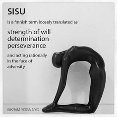 sisu-strength, determination, perseverance, and acting rationally in the face of adversity.