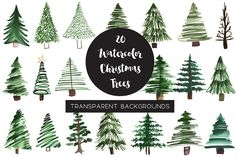 Watercolor Pine Tree Clipart - Illustrations