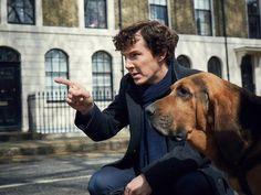 "First look at ""Sherlock"" season 4 shows Cumberbatch, canine companion!"