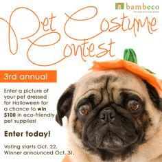 It's that time of year again! Enter our 3rd Annual Pet Costume Contest to win some great eco-friendly pet products from bambeco! We can't wait to see... http://ow.ly/ephD2