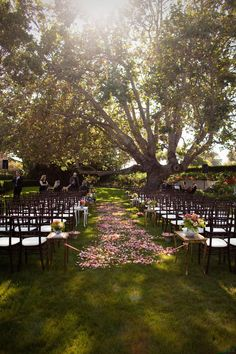 Pretty ceremony under the trees - good for weddings that have a lot of young/elderly guests.