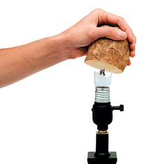 How to remove the base of a broken light bulb. | Photo: Brian Henn/Time Inc. Digital Studio | thisoldhouse.com