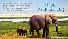 Free A Mother's Strength eCard - eMail Free Personalized Mother's Day Cards Online Mothers Day Status, Happy Mothers Day Images, Mothers Day Pictures, Mother Images, Funny Mothers Day, Mothers Day Quotes, Mothers Day Cards, Elephant Wallpaper, Kids Wallpaper
