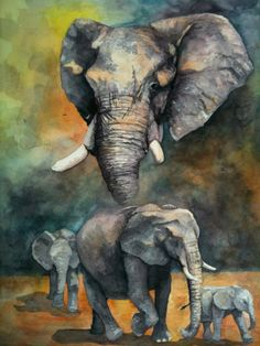 www.matthewgale.com elephant watercolor