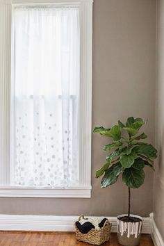 White Dot Curtains DIY