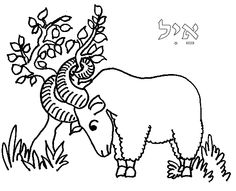 great way of showing ram in thicket that God provides, can paper mache ram and use real bush with horn entangled in it.