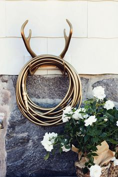 Gold hose and antler holder. I want!