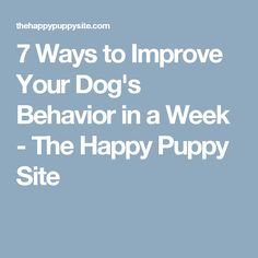 7 Ways to Improve Your Dog's Behavior in a Week - The Happy Puppy Site