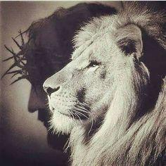 Tattoo Lion Of Judah Jesus 38 Ideas The post Tattoo Lion Of Judah Jesus 38 Ideas appeared first on Best Tattoos. Lion Of Judah Jesus, King Jesus, Jesus Tattoo, Prayer Tattoo, Lamb Tattoo, Jesus Drawings, Lion And Lamb, Lion Wallpaper, Prophetic Art