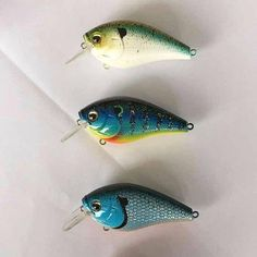 http://www.sixgillfishing.com  They're not there yet, but here are some of the new colorways we're working on for both cranks and jerkbaits. We're pretty stoked to tie these on. #sixgillLures #sixgillfishing #fishing #flyfishing #fishinglife #fishingtrip #fishingboat #troutfishing #sportfishing #fishingislife #fishingpicoftheday #fishingdaily #riverfishing #freshwaterfishing #offshorefishing #deepseafishing #fishingaddict #lurefishing #lovefishing #fishingboats #instafishing