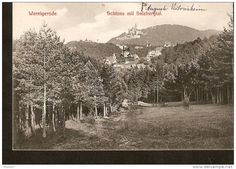 440. Germany Wernigerode - Schloss mit Salzbergtal - Fr. Gottsched, Wernigerode - Druck v Louis Koch, Halberstadt