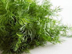 Urtemajones Mad, Herbs, Garden, Lawn And Garden, Herb, Gardens, Outdoor, Home Landscaping, Tuin
