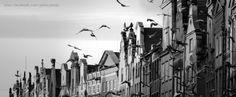 #Tenement houses in #Gdansk / Kamienice w Gdańsku | Author: Piotr Połoczański