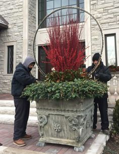 If you've frequented Detroit Garden Works during the winter& season in the past 4 or 5 years, you've seen Rob's light rings. Inspired a number of years ago to wrap a trio o… Outdoor Christmas Planters, Christmas Urns, Christmas Greenery, Christmas Arrangements, Outdoor Christmas Decorations, Winter Christmas, Christmas Wreaths, Christmas Crafts, Fall Planters