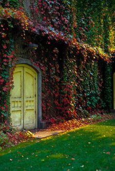 All Replies on Interesting Doors ................. Photo Blog @ LumberJocks.com ~ woodworking community