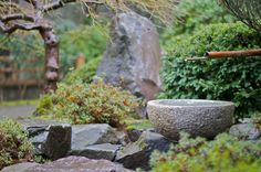 japanese garden design | Japanese Backyard Garden Designs Ideas exotic-japanese-garden-design ...