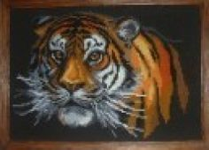 Just Cross Stitch Patterns | Tiger on black aida. Gorgeous! *after*