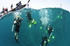 This picture was taken @Ko Phi Phi #scuba #Ko Phi Phi #Thailand #diving #arctivity   arctivity.com