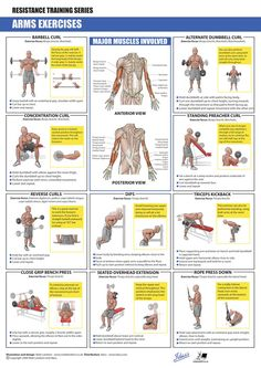 ARMS Exercises