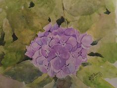 Watercolors  Hydrangea  32x23cms