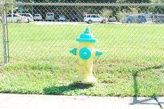 Hydrant/Lutz Florida