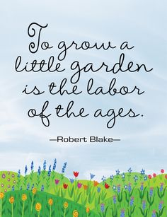 grow a little garden