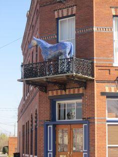 Blue Horse located at D Timm's at 302 Sixth Street Augusta, GA 30901 created by artist Paul Pearman. #publicart #augustaga #paulpearman