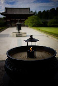Nara Park (奈良公園) | Pursuing Wabi