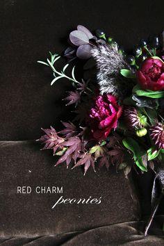 Red Charm Peony Arrangements