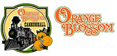 Orange Blossom Cannonball  This is such a cute old train. They have train rides that are The Great Pumpkin, The Haunted Cannonball, The Grapes of Bordeaux, The Cannonball Christmas Express and the Pizza Express. It is a fun filled train ride for all ages.